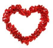 Colore rosso luminoso di figura del cuore dei berryes di GOJI fotografia stock libera da diritti