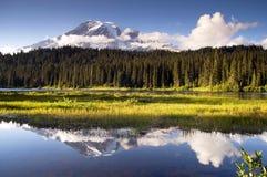 Colore saturato nel lago Mt. Rainier National Park reflection immagini stock