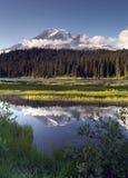 Colore saturato nel lago Mt. Rainier National Park Ver reflection fotografia stock libera da diritti
