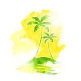 Colore tropicale di lerciume dell'acqua dell'isola della palma illustrazione di stock