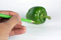 Colore verde Immagine Stock