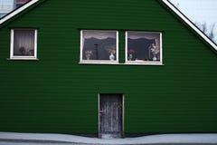 Colore verde di legno della porta di entrata di architettura della Camera Immagini Stock Libere da Diritti