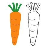 Coloreado y línea zanahoria del icono Fotos de archivo libres de regalías