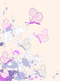 Colored abstract floral background. With camomiles and butterflies Royalty Free Stock Images