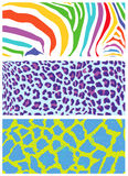 Colored animal skin and fur patterns. Royalty Free Stock Image