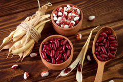 Colored assorted french beans in wooden bowls Stock Image