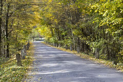 Colored autumn and an old road with milestones Stock Images