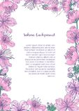 Colored background with floral frame consisted of beautiful pink blooming flowers and buds of Japanese sakura hand drawn Stock Photos