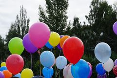 Colored balloons in the nature royalty free stock photo
