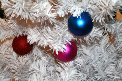 Colored Balls. On the branch as Christmas decoration Royalty Free Stock Images