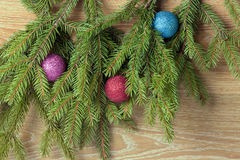 Colored balls are on the fir trees Stock Photos