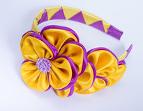 Colored barrette Royalty Free Stock Photos