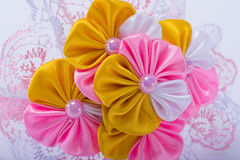 Colored barrette Royalty Free Stock Images