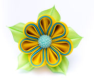 Colored barrette Royalty Free Stock Photography