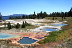 Colored Basins. Surrounded mineral sediments, in Yellowstone Stock Image
