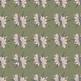 Colored beautiful flowers on a dark background seamless pattern Royalty Free Stock Photos