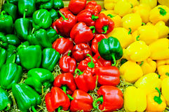 Colored bell pepper paprika. Market stand with red, green and yellow colored bell pepper paprika Stock Photos