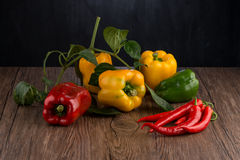 Colored bell peppers Royalty Free Stock Photography