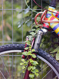 Colored bike Stock Photography