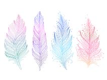 Colored bird feathers. Isolated objects - blue, purple, green and pink, boho style. Vector illustration royalty free illustration