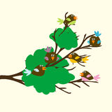 Colored birds on a leafy branch Royalty Free Stock Photos