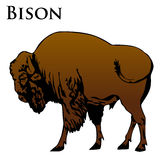 Colored bison illustration Royalty Free Stock Images