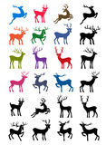 Colored & black outlined deer  silhouettes Stock Images