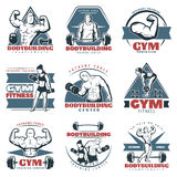 Colored Body Building Emblem Set Royalty Free Stock Photo