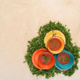 Colored bowls with tomato gazpacho soup among the greenery Stock Image