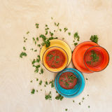 Colored bowls with tomato gazpacho soup among leaves of the gree Royalty Free Stock Photos