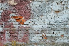 Colored brick wall Royalty Free Stock Images