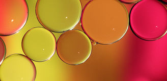Colored bubbles Royalty Free Stock Images