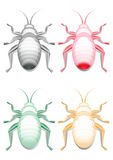 Colored bugs images Royalty Free Stock Photography