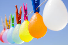 Colored bunch of balloons hanging on a clothesline. Selective focus on a bunch of wet colored water filled balloons hanging on a clothesline with a blue sky as Royalty Free Stock Photography