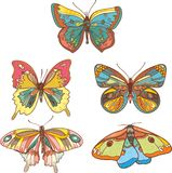 Colored butterflies Royalty Free Stock Images