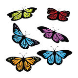 Colored Butterflies Stock Image