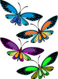 Colored butterflies. Four colored butterflies isolated on white royalty free illustration