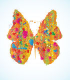 Colored butterfly Royalty Free Stock Image