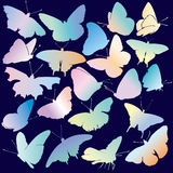 Colored Butterfly Silhouette Set Stock Photos