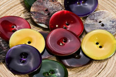 Colored buttons made from seashells Stock Photography