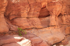 Colored Canyon. Stock Photography