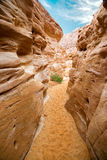 Colored Canyon, Sinai Stock Photo