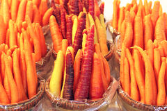 Colored carrots Royalty Free Stock Photography