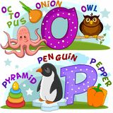 English alphabet O P. Colored cartoon English alphabet with O and P letters for children, with pictures to these letters with an octopus, an onion, an owl, a Royalty Free Stock Images