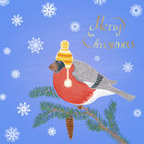 Colored chalk drawn illustration with bullfinch in a hat on fur-tree branch, Merry Christmas text and snowflakes. Stock Images