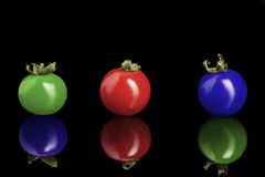Colored cherry tomatoes. Isolated on a black background Stock Image