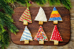 Colored Christmas tree cookies on a dark wood background Stock Image