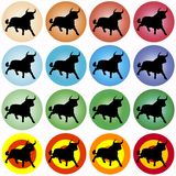 Colored circles with black bull royalty free stock photography
