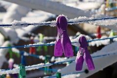Colored clothespins Stock Photos