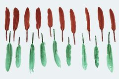Colorful feathers, red and green, on white background, stilised background. Colored colorful feathers, red and green, on white background, stilised background Royalty Free Stock Image